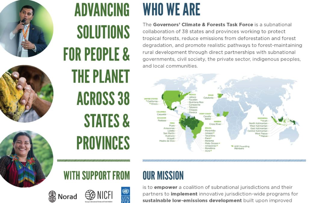 GCF Task Force One-Page Overview