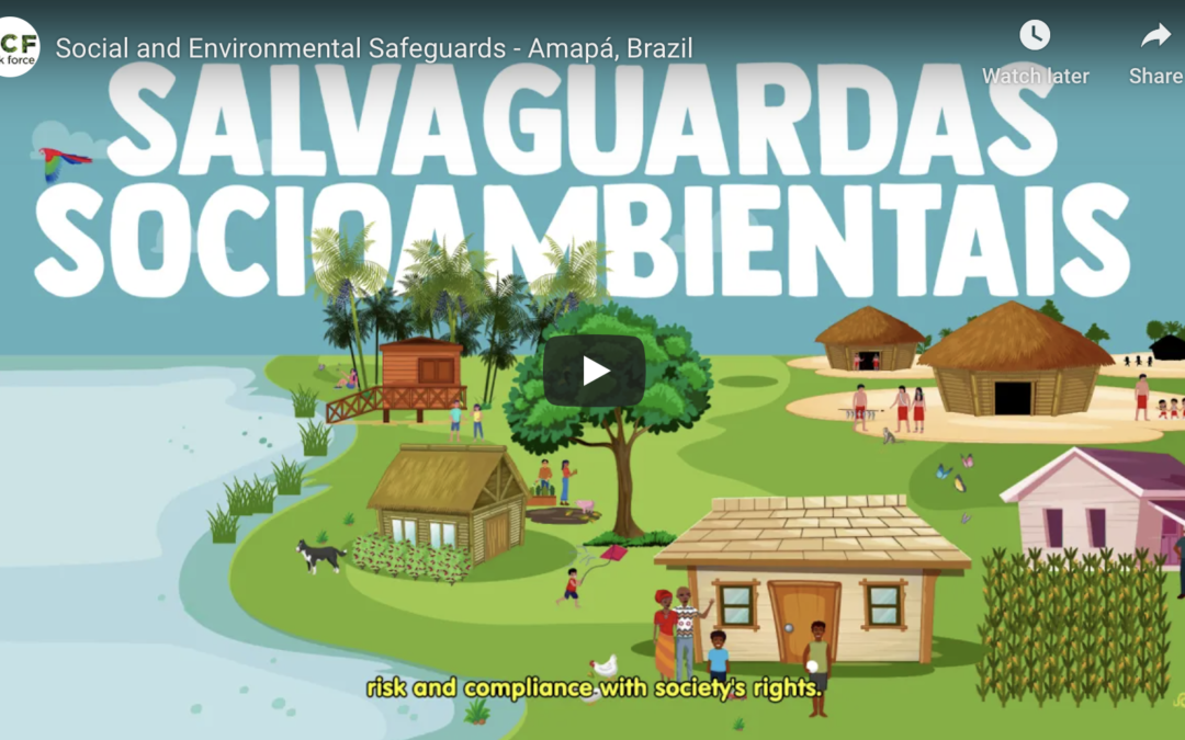 Socio-environmental Safeguards: Amapá committed to the rights of the population and the environment