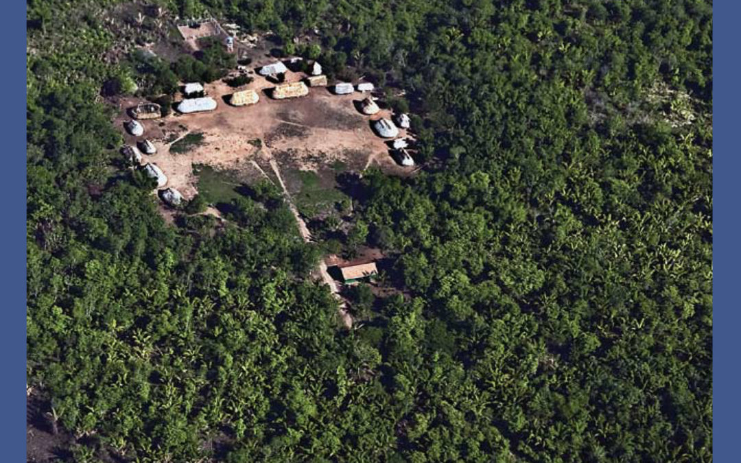 Avoided Deforestation (REDD) and Indigenous Peoples