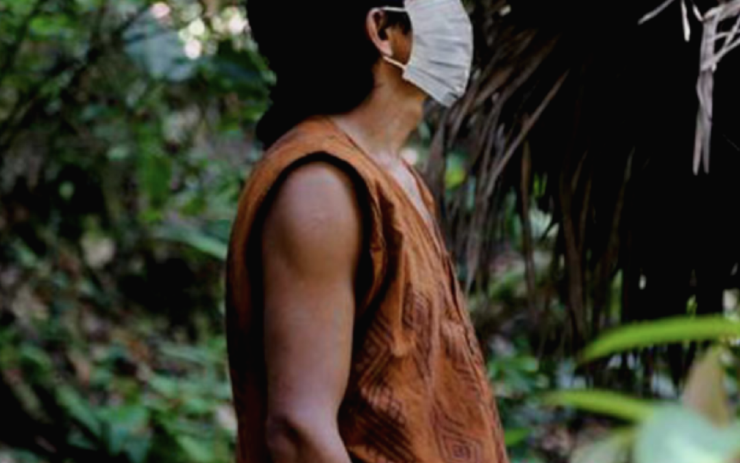 Resilient Amazon: From Emergency to Sustainable Development in the Wake of COVID-19