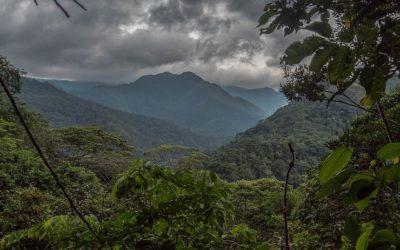 """Acuerdo Público Privado """"Producir Conservando y Conservar Produciendo"""" en Ucayali"""