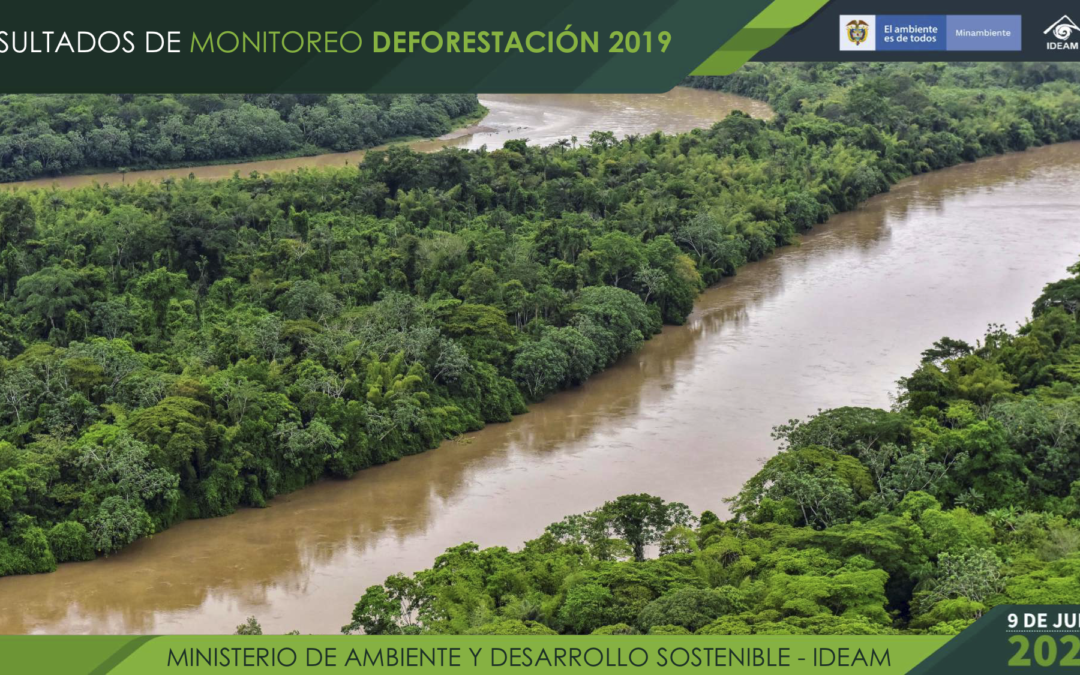 2019 Results from Monitoring Deforestation in Colombia