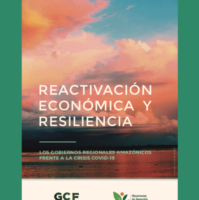 Economic Reactivation and Resilience