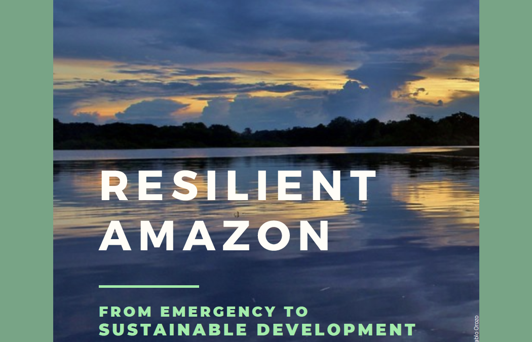 Resilient Amazon: from emergency to sustainable development