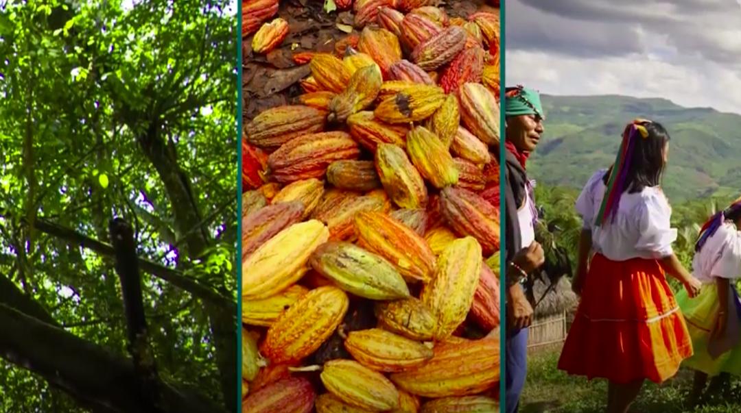 Ver el vídeo: Programa de Incentivos Regionales en Perú