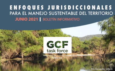 Updates from GCFTF Mexico